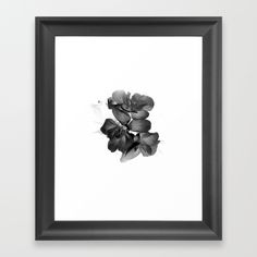Black Geranium in White Framed Art Print by #ARTbyJWP in #Society6  #artprint #buyart #framedart #walldeco #blackandwhite #floral #flower -- Choose from a variety of frame styles, colors and sizes to complement your favorite Society6 gallery, or fine art print - made ready to hang. Fine-crafted from solid woods, premium shatterproof acrylic protects the face of the art print, while an acid free dust cover on the back provides a custom finish. All framed art prints include wall hanging…