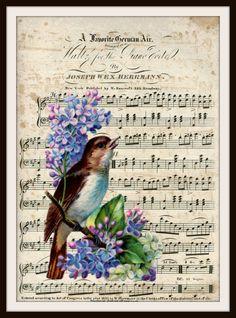 "Vintage Art Print Bird on Ephemera Music Page, Print Wall Decor, 8.5 x 11"" Unframed Printed Art Image"