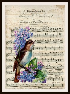 "Vintage Art Print Bird on Ephemera Music Page, Print Wall Decor, 8.5 x 11"" Unframed Printed Art Image"