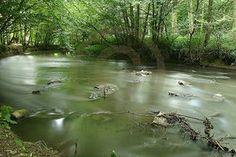 Une rivière qui coule lentement. Le temps qui s'arrête, figé dans un moment privilégié où tous les espoirs naissent.
