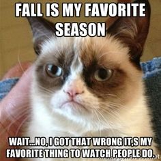 Grumpy Cat  - Fall is my favorite season  Wait...no, I got that wrong it,s my favorite thing to watch people do.