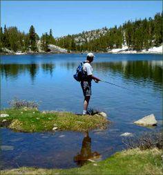 http://www.villagegetaway.com/images/500_1-fishing-mammoth-lakes.jpg