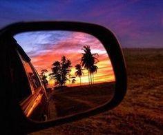 #sunset #palmtrees