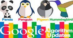 Image result for seo algorithms by google