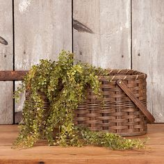 Check out the deal on Hanging Baby Grass at Irvin's Tinware Country Front Porches, Arts And Crafts, Diy Crafts, Porch Decorating, Decorating Ideas, Country Primitive, Country Decor, Greenery, Grass