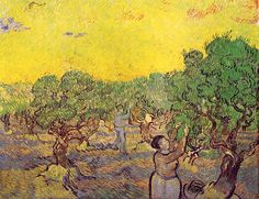 Olive Grove with Picking Figures  - Vincent van Gogh - Painted in December 1889 while in the Saint-Rémy Asylum - Current location: Rijksmuseum Kröller-Müller, Otterlo, Netherlands ...............#GT