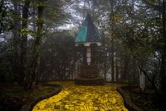 """Still, he recommends that if people want to visit the Land of Oz """"they should go for it!"""" 
