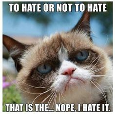 To hate ...