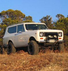 International Harvester Scout II. Look closely and you'll see the other Scout staring at this one.