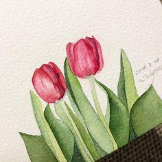 -  - #튤립 #봄 #봄꽃 #꽃그림 #수채화 #수채화일러스트 #일러스트 #베리현 #spring #flower #tulip #tulips #watercolor #watercolour #watercolorpainting #watercolourpainting #illustration #illust #aquarelle #акварель #drawing #veryhyun #iphoneX #아이폰x #saunders #샌더스 #삼원특수지