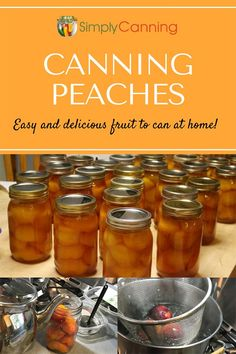 Canning Peaches: Easy to Do & Makes the House Smell Amazing! Canning peaches: Does anything beat picking a peach fresh off the tree and eating it right there? Learning how to can peaches enables you to have that fresh taste year around. can help! Canning Tips, Home Canning, Canning Recipes, Canes Food, Canning Pressure Cooker, Pressure Cooking, Easy Dinner Recipes, Easy Meals, Canned Applesauce
