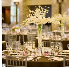 The couple kept their reception decor stylish yet subdued so as not to compete with their ornate reception room. Guests sat in silver chiavari chairs, and dark brown linens topped the tables. Tall V-shaped vases overflowed with white dendrobium orchids.