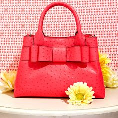 Take a look at the Kate Spade & Coach event on zulily today!