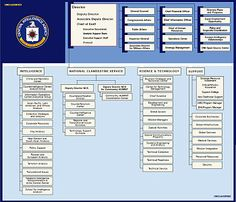 CIA ORG Structure - Central Intelligence Agency - Wikipedia, the free encyclopedia Organizational Chart, Organizational Structure, Central Intelligence Agency, Intelligence Service, Technology Support, Science And Technology, Law Enforcement Careers, Chain Of Command, General Counsel