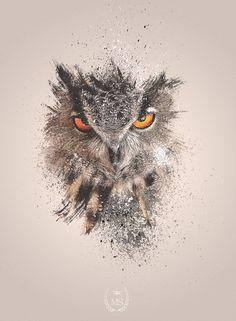 In our Digital art galleries we present a mixture of stunning photo manipulations, digital illustrations and other amazing digital art that we've stumbled upon Owl Tattoo Back, Owl Eye Tattoo, Art And Illustration, Illustrations And Posters, Owl Tattoo Design, Tattoo Designs, Rabe Tattoo, Owl Eyes, Design Poster
