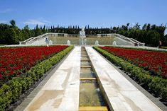 """¿Sabías qué? En México tenemos el jardín más grande del mundo, nombrado """"Jardines de México"""", hermoso y con una gran variedad de de plantas y florales..."""