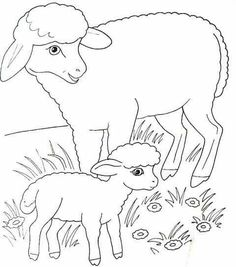 Kindergarten Coloring Pages, Farm Animal Coloring Pages, Free Adult Coloring Pages, Cute Coloring Pages, Coloring Books, Baby Quiet Book, Animal Knitting Patterns, Applique Patterns, Fabric Painting