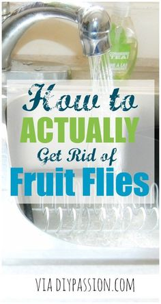 How to ACTUALLY get rid of fruit flies - You won't believe how easy it is! The secret to how to actually get rid of fruit flies for good! House Cleaning Tips, Diy Cleaning Products, Cleaning Solutions, Spring Cleaning, Cleaning Hacks, Cleaning Recipes, Green Cleaning, Cleaning Supplies, Fruit Fly Repellent