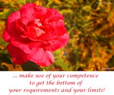 ... make use of your #competence to get the bottom of your requirements and your #limits!