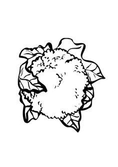 Kleurplaat bloemkool. Kinderen leren terwijl ze kleuren. Afbeeldingen voor scholen en onderwijs - afb 9558. Coloring Sheets, Coloring Books, Kinds Of Vegetables, Online Coloring Pages, Fruit Pattern, Something Beautiful, House Colors, Cauliflower, School