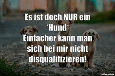 Es ist doch NUR ein *Hund* Einfacher kann man sich bei mir nicht disqualifizieren! ... gefunden auf https://www.istdaslustig.de/spruch/3217 #lustig #sprüche #fun #spass