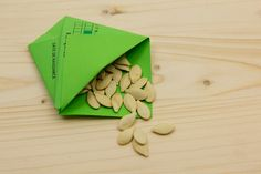 Gabarit pour realiser sachet en papier ouvert et graines de courge