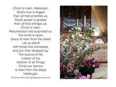 pentecost meditation catholic