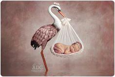 Newborn-photos-marlton-studio2.jpg