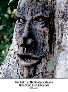 I love these tree faces