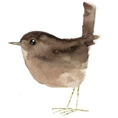 this is SUCH a beautiful, simple watercolour.  Sigh...... wren | matt sewell