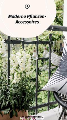Wohnaccessoires, wie stylishe Blumentöpfe oder dekorative Vasen verleihen Deiner Einrichtung einen ganz persönlichen Stil. Wir zeigen Dir die schönsten Pflanzen-Accessoires und haben ein paar Ideen für Dich, wie Du damit Dein Zuhause gestalten kannst. Modern, Outdoor Structures, Decorative Vases, Small Trees, Personal Style, Planting, Succulents, Indoor House Plants, Couple