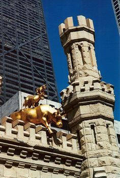 cows on parade chicago | Cows on Parade - Chicago Water Tower | Flickr - Photo Sharing!