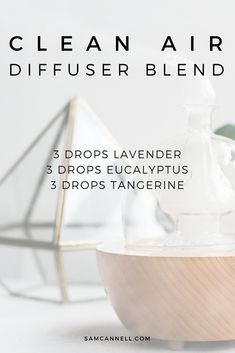 Refresh your home with this clean air diffuser blend.