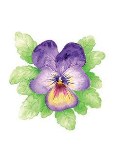 Viooltje Art Print Art bloemenprint viooltjes viooltje