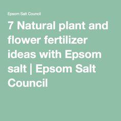 7 Natural plant and flower fertilizer ideas with Epsom salt | Epsom Salt Council
