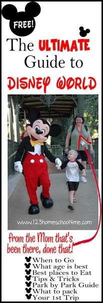 ultimate guide to disney world from a mom that's been there done that- movies