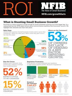 Infographic of what's slowing small business growth