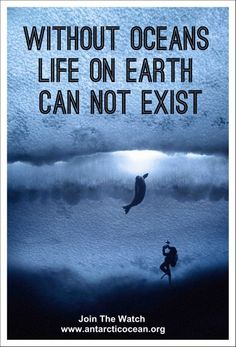 Without Oceans, Life on Earth Cannot Exist