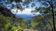 Point Lookout, New England National Park