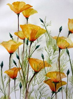 Watercolor: Garden-Inspired Bouquet, California poppies. singhroha