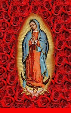 Our Lady of Guadalupe pray for us Blessed Mother Mary, Divine Mother, Blessed Virgin Mary, Novenas Catholic, Image Jesus, Virgin Mary Art, Novena Prayers, Catholic Prayers, Sainte Marie