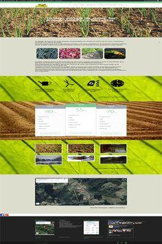 Alquiler de huertos Zaldu. Portada. Portada de la web http://alquilerhuertosdezaldu.es/