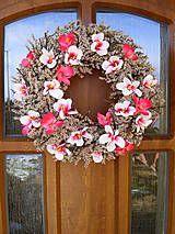 Magnoliovy jarny