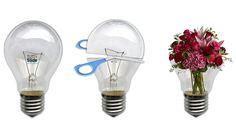Flower gift ideas  [Cristina Rigutto]
