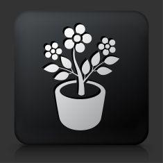Black Square Button with Plant in Pot Icon vector art illustration