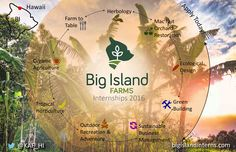 Big Island Farms Internships in Hawaii