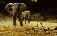 Robert Bateman a master of animal painting.