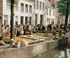 Bloemenmarkt op 't Havik.