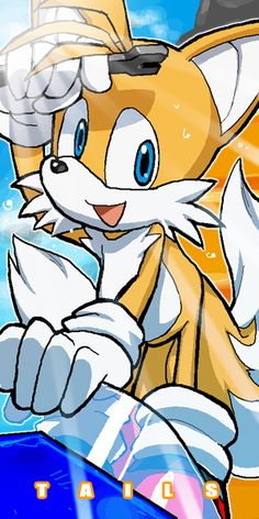 The Cute Two-Tailed Fox Who Is Sonic's BFF