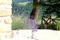 Borgo Belvederi #marche #hotel #holiday #benessere #wellness #camerino http://www.marchetourismnetwork.it/?place=borgo-belvederi